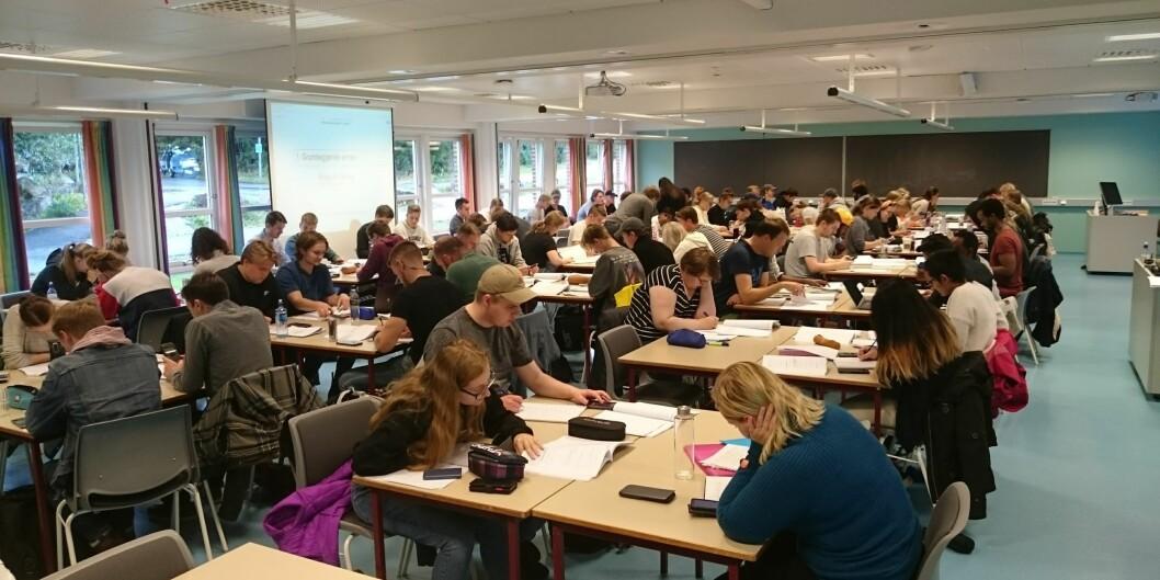 Klasserommene ved Høgskolen i Molde er som oftest fylt til randen med studenter når oppgavene i matematikk skal løses. Foto: Per Kristian Rekdal