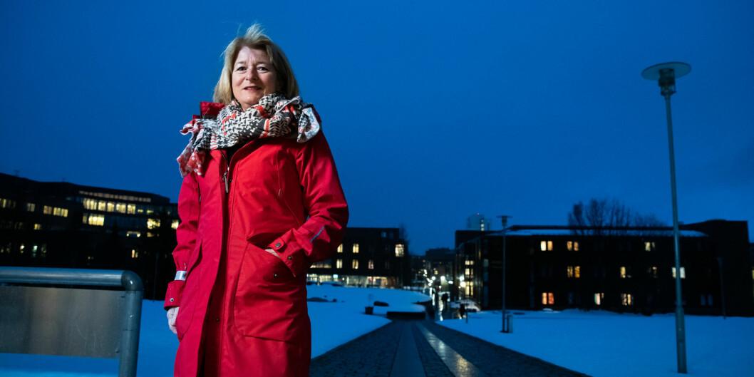 Vi leter etter strategier som kan tydeliggjøre UiTs plass i Øst-Finnmark og spesielt i Kirkenes, skriver rektor ved UiT Anne Husebekk og viserektor Sveinung Eikeland. Foto: Lars Åke Andersen