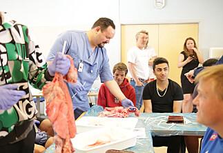 Vi må bidra til mer kjønnsnøytral kommunikasjon på sykepleierutdanningen