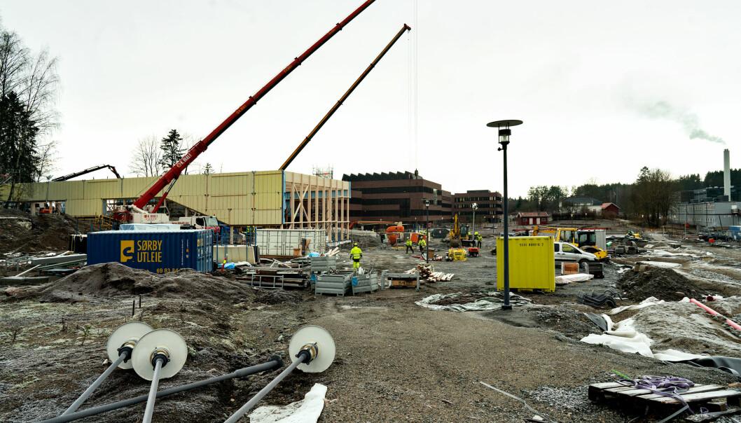 Byggeplassen på Campus Ås, desember 2019. Her bygger NMBU et enormt bygg — som universitetet frykter Statsbygg skal ta over. Foto: Ketil Blom Haugstulen