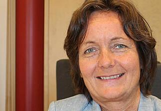 Nytt styre ved Høgskolen i Innlandet