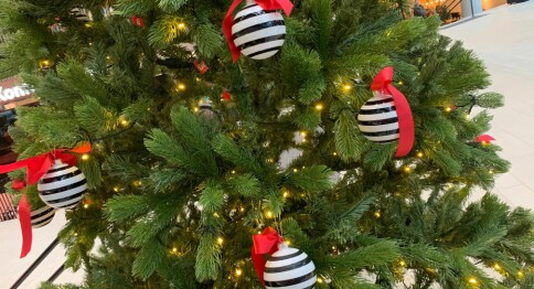 Økonom om økonomien i julegaver