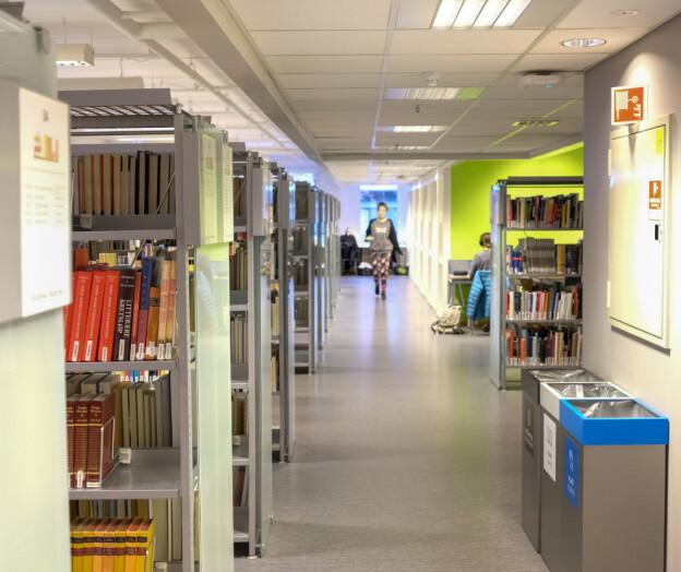 Det finnes større muligheter for å utvikle norskspråklige fagbøker