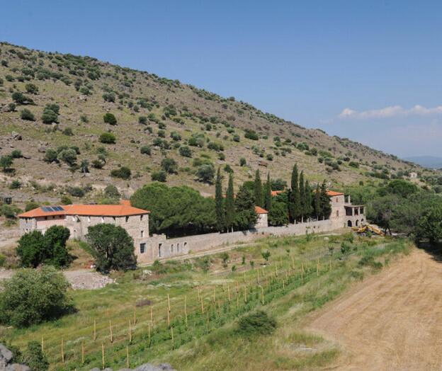 Agder-styret revurderer Hellas-tur