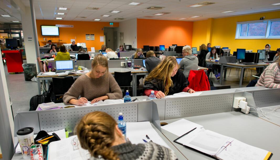 — De grunnleggende ferdighetene som studentene forventes å tilegne seg kan gi fremtidige arbeidstagere den fagovergripende kunnskapen de trenger for å kunne bidra positivt til en omstilling, skriver innleggsforfatterne om arbeidslivsrelevans i utdanningen.