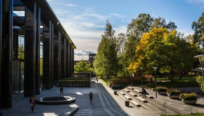 De kommende ukene vil vise hvor tett undervisningen kan foregå ved Universitetet i Oslo.
