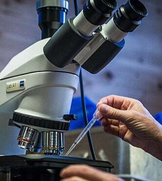 Forskertokt med UiO I Arendal