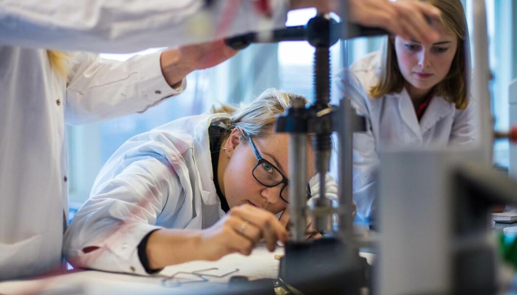 Ingeniørstudenter er blant studentene som ikke har obligatorisk praksis gjennom studiet, men som kan få det. Her er daværende ingeniørstudenter fra OsloMet i aksjon.