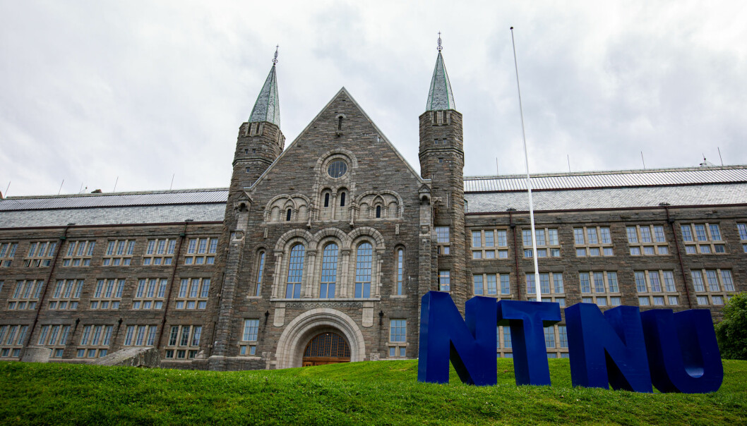 HR- og HMS-sjef Arne Hestnes svarer på flere av sakene som er blitt skrevet om lederansettelser ved NTNU den siste tiden.