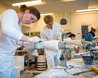 Norske studenter mindre fornøyd med arbeidsrelevans enn svensker og finner