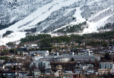 Direktørstilling for UiT Narvik er utlyst