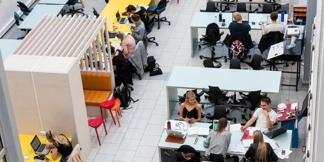 Illustrasjonsfoto: Studenter som arbeider ved NTNU.