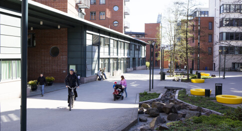 25 søker om å bli professor på lærerutdanningen ved OsloMet