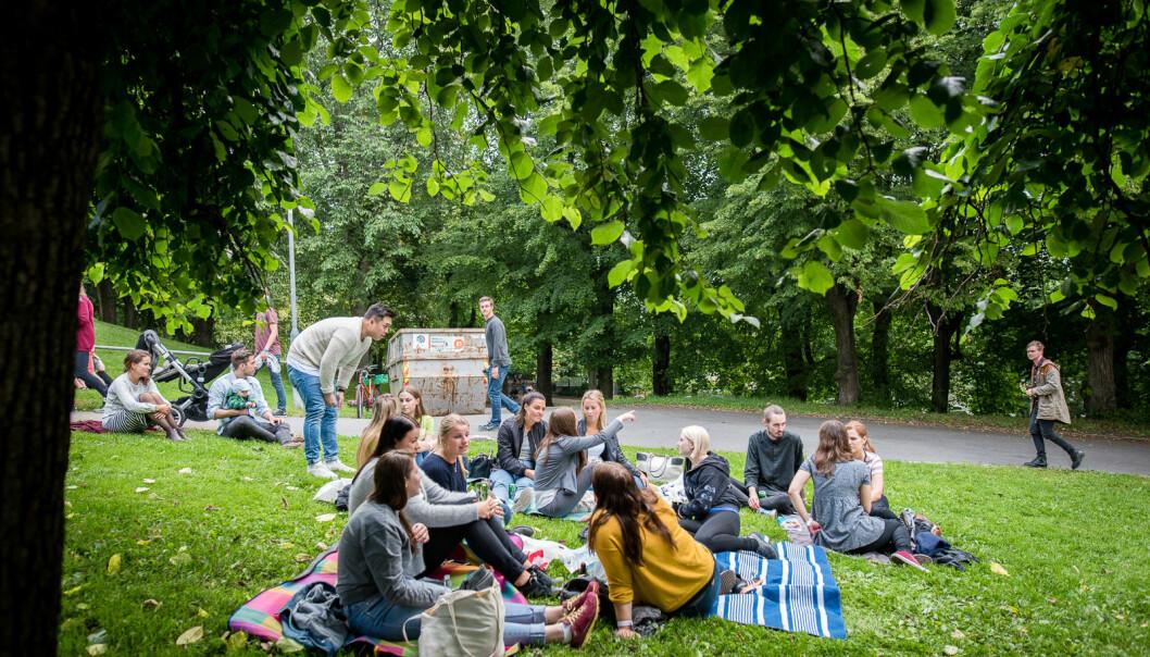 Piknik i parken vil man fremdeles kunne arrangere ved OsloMet, så lenge det ikke blir servert alkohol. Faddergruppene er i utgangspunktet omlag 20 personer i år.