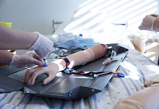Flest tvilsmeldingar om studentar som vil bli sjukepleiar og barnehagelærar