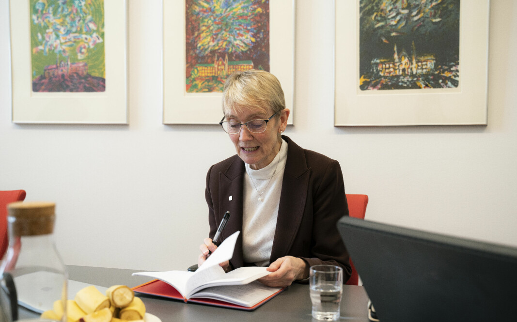 NTNU, med rektor Anne Borg, er blant dei 26 norske høgare utdanningsinstitusjonane som ikkje har tatt fagspråk med i sine strategiske prioriteringar, ifølgje ein rapport frå Diku.