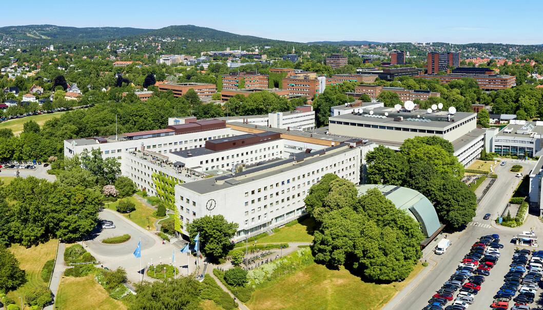 Dette er området på Marienlyst som Ferd nå har kjøpt. Foto: NRK/Gregard Palotta