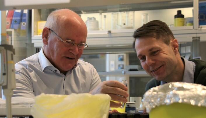 Professoren fryktet at forskerkarrieren var over da han fylte 70 år. Nå forsker han for næringslivet.