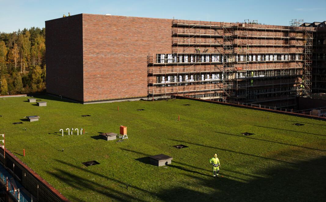 Veterinærbygget i Ås nærmer seg ferdigstillelse. Men endelig dato er forskjøvet, og NMBU frykter den vil bli forskjøvet igjen. Foto: Statsbygg