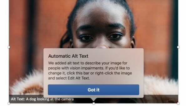 Dette var forslaget til Microsoft sin nye kunstige intelligens om kva som var på biletet. Skjermdump: Kuldova sin Powerpoint-presentasjon
