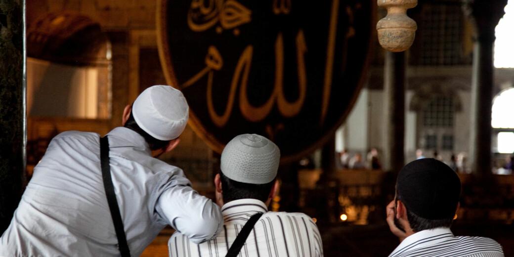 Jeg har aldri skrevet som om det skulle være en generell holdning blant norske muslimer å gå inn for det, og nettopp derfor spurte jeg Mohammad Usman Rana og andre presumptivt oppegående talsmenn for denne religionen hvordan de kan støtte den islamistiske posisjonen formulert i brevet., forklarer Truls Wyller.