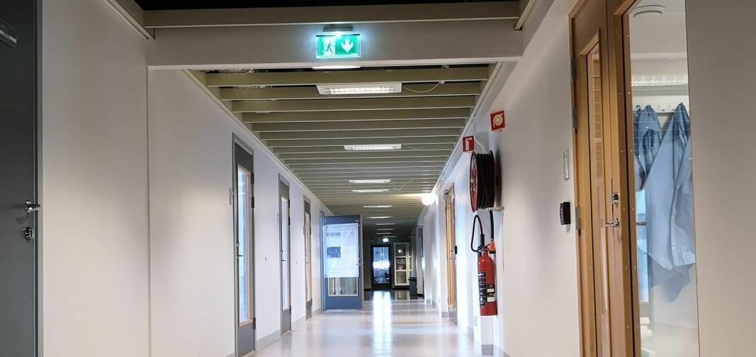 Tomme korridorer ved Institutt for biovitenskap ved Universitetet i Oslo