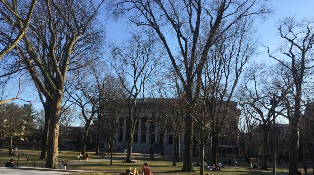 Fra Sterris egen fotokolleksjon: Harvard-universitetet