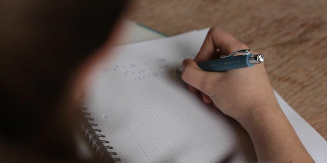Eksamen har en viktig kvalitetssikrende funksjon fordi eleven får en ekstern vurdering av sin fagkompetanse, mener Rita Helgesen i Norsk Lektorlag