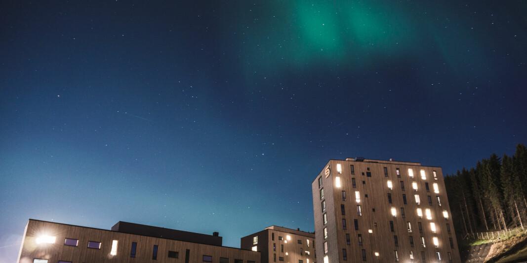 Norges arktiske studentsamskipnad og deres studentboliger i Dramsvegen kan stå tomme til høsten. Studentsamskipnadene frykter konsekvensene koronaviruset kan få for deres virksomhet.