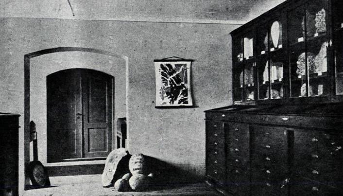 Utstilling av bergarter, mineraler og fossiler i kjelleren på Bergens Museum 1890; resultatet av Thomassens ryddejobb i de kaotiske geologiske samlingene. Bildet er hentet fra jubileumsboka til Bergens Museum fra 1925.