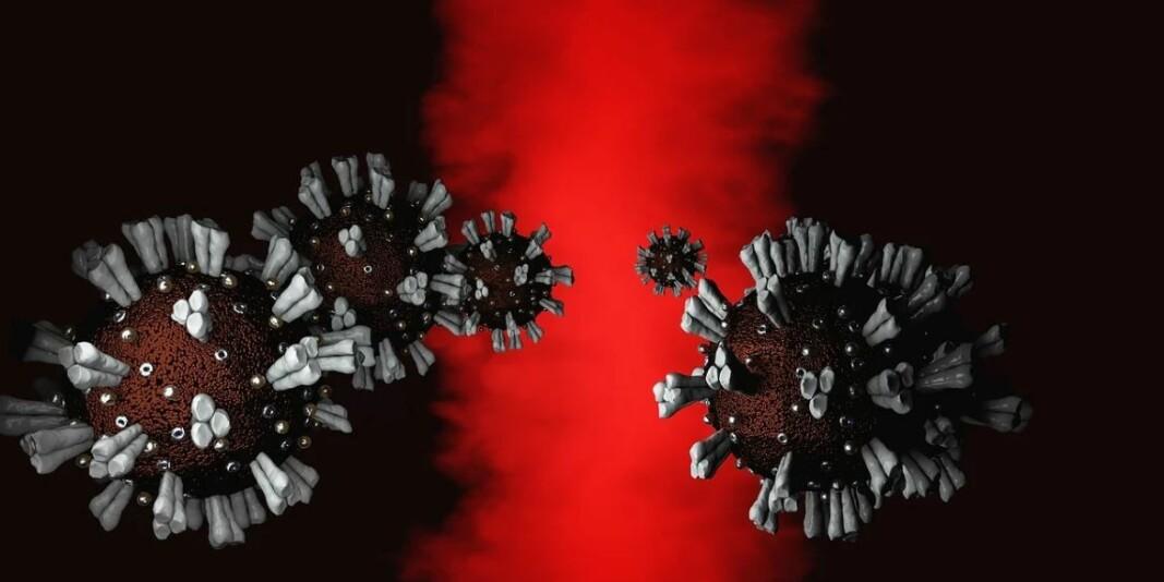 Koronaviruset ser skummelt og dystert ut, må man kunne si, men kanskje er musikken mer beroligende? Døm selv ved å lese artikkelen og høre sangen!