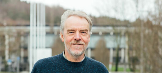 UNESCO-professorat til UiS