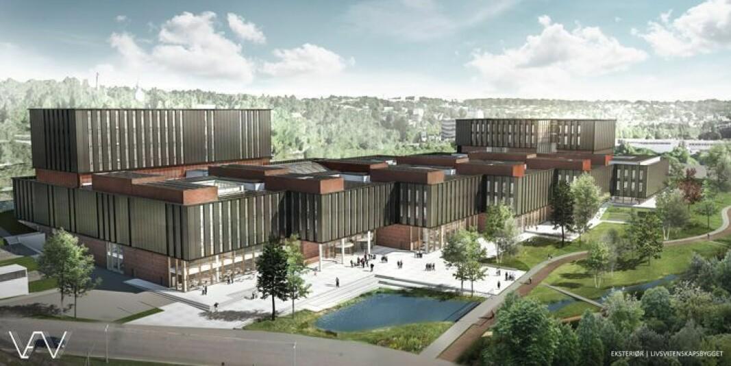 Slik skal Universitetet i Oslos Livsvitenskapsbygg se ut når det er ferdig.