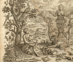 Spesialsnop om Carl von Linné: Den selvbevisste systematiker