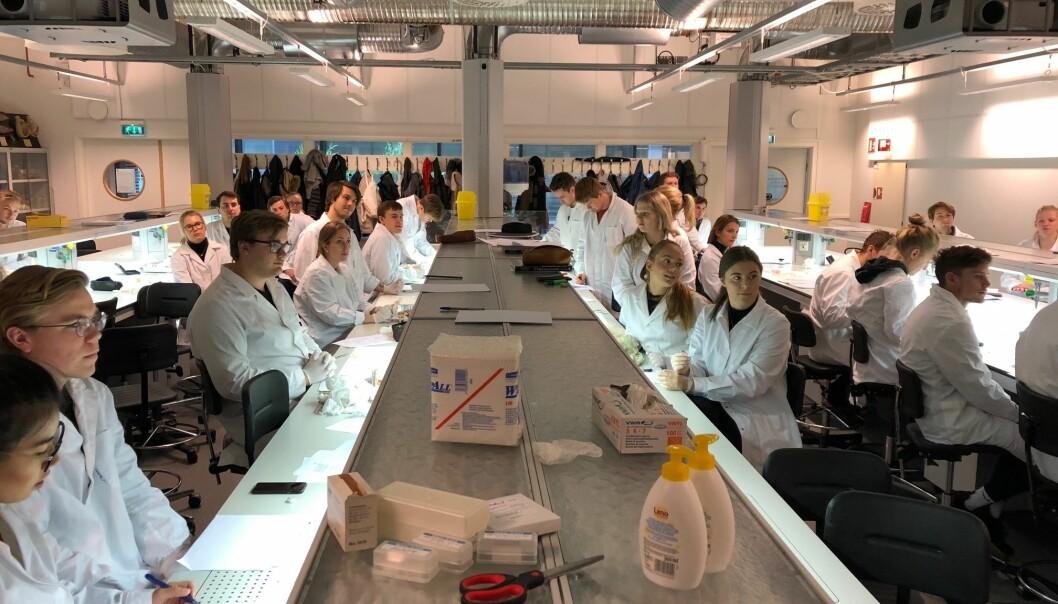 Hvilke studenter er ansettbare, undrer artikkelforfatteren. Her er fiskehelsestudenter på bioCEED, et senter for fremragende utdanning, lokalisert ved Universitetet i Bergen.