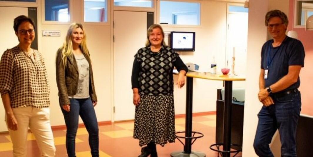Studiesjef Sissel Waagbø (f.v.), overingeniør Anne Margrethe Løvold, internasjonal koordinator Ragnhild Brakstad og IT-sjef Kjetil Kroknes., alle ansatte ved Høgskolen i Molde.