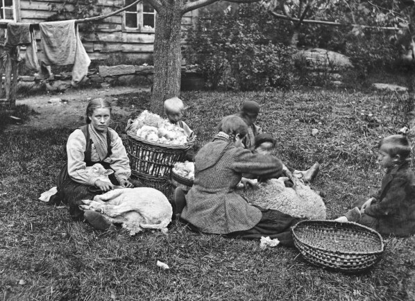 «Parti fra Hardanger (Faareklipning)», fotografert på garden Tokheim i 1872. Ubb-kk-1318-0830.