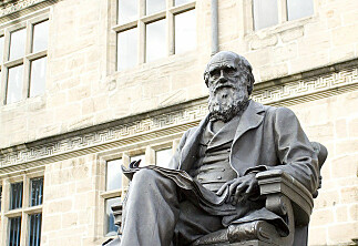Har fått publisert Darwin-kritikk