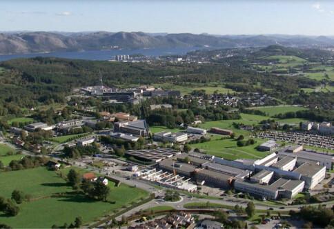 «Bidrar ikke med penger til at UiS blir filial av Bergen»