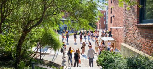 Tjora: Må vere kreative for dei einsame studentane