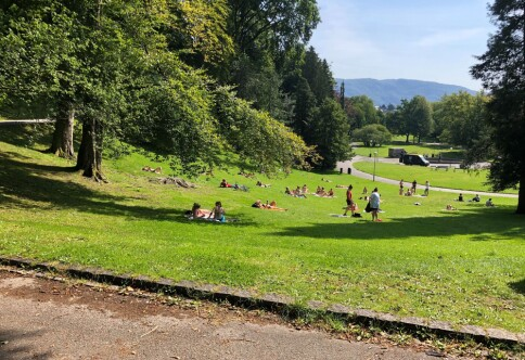 Flere studenter i Bergen utsatt for tyveri under fadderukestart