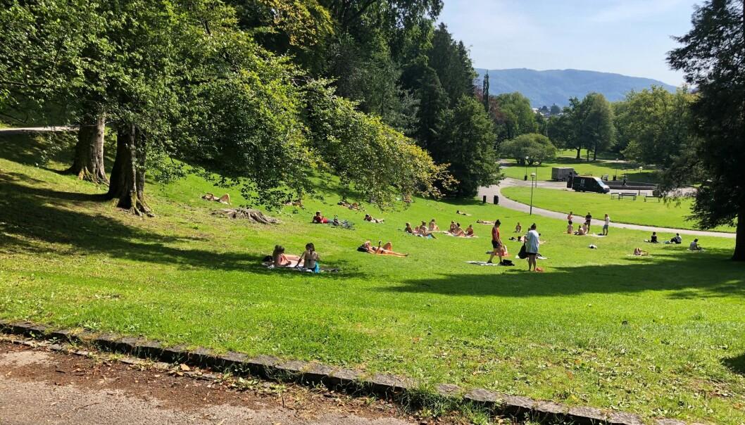 Under fadderuken i Bergen samles flere studenter i Nygårdsparken. Mandag ble flere studenter frastjålet flere eiendeler.