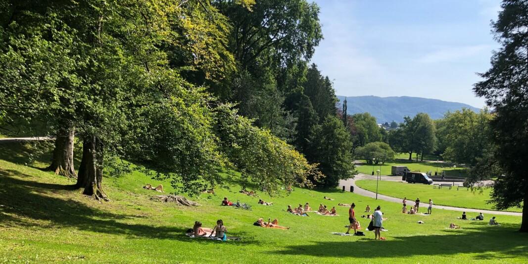 I Nygårdsparken i Bergen koser både nye studenter og fastboende seg i solen onsdag i fadderuken - med god avstand.