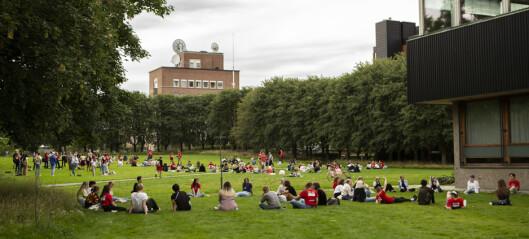 Ingen universiteter er fornøyde med arbeidet for etnisk mangfold