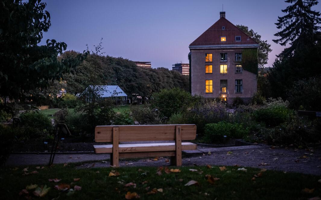Carl Von Linné-benken står i Botanisk hage i Oslo, til ære for den moderne systematikkens far — og den moderne rasismens far, ifølge SV-politiker.