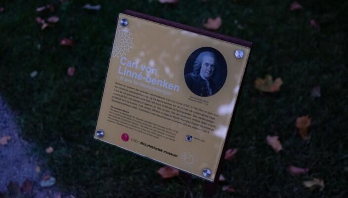 Plaketten ved Linné-benken i Botanisk hage.
