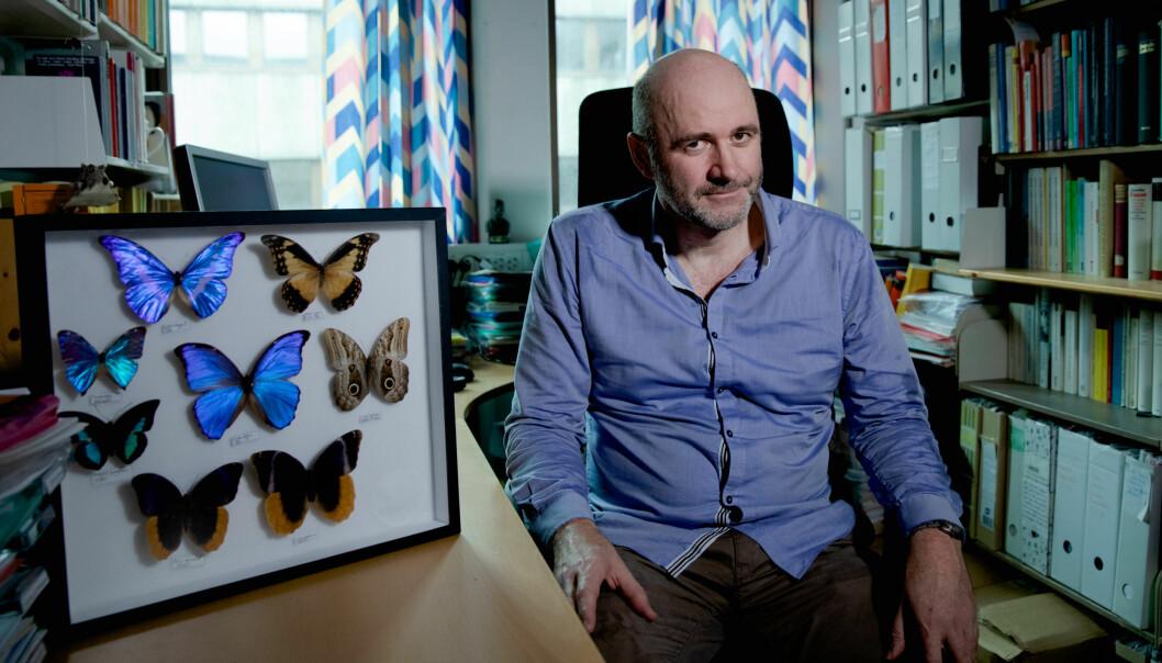 Professor Torgeir Skorgen poserer foran deler av sommerfugl-samlingen sin. — Vi kan ikke ha postkolonialisme som det eneste perspektivet på historien, sier han.
