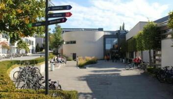 Høgskolen i Innlandet på Hamar.