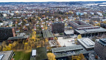 Blindern, Universitetet i Oslo (UiO)
