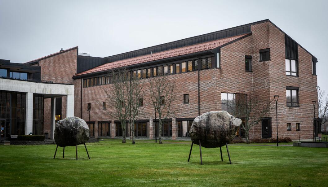 Er strukturene som sitter i veggene her ved Universitetet i Sørøst-Norge i Bø, rasistiske?